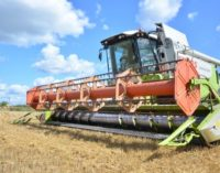 Повышать урожайность в Хабаровском крае будут с помощью ученых