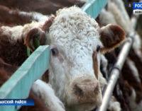 Сельхозпроизводители Новосибирской области готовятся к технологическим переменам
