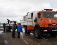 Снегопад в одном из районов Кызылординской области привел к падежу скота