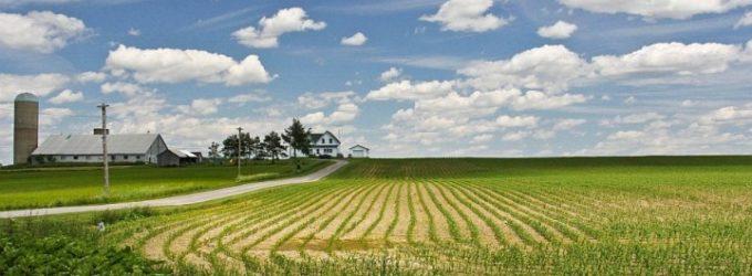В Хабаровском крае количество заброшенных сельхозземель увеличивается