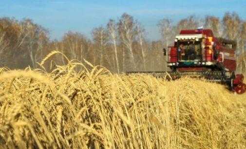 Новосибирская область расширит географию экспорта