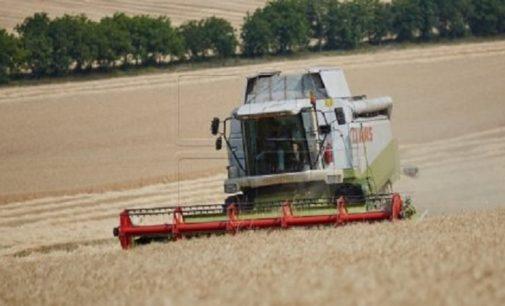Специалисты сельского хозяйства и гидрометеослужбы дали прогноз урожаю озимых
