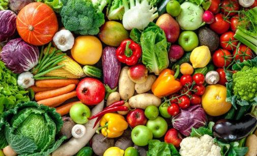 В Узбекистане будет создана сельхозкооперация в плодоовощеводстве