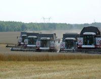 Кабмин выделит почти 14 млрд рублей на поддержку фермеров в 83 регионах РФ