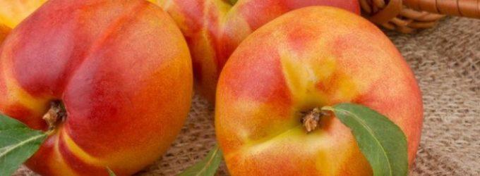 Узбекистан начал экспортировать персики и дыни в Оман