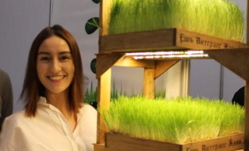 Энергия пшеницы для здоровья людей