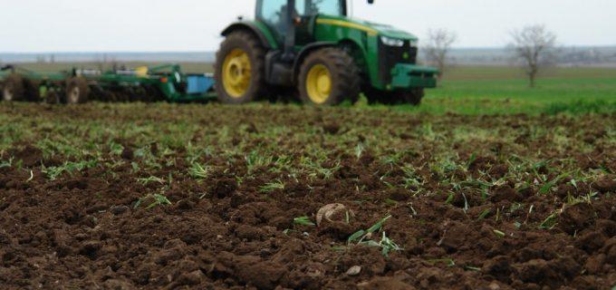 Крымские аграрии заявили об ущербе от погодных аномалий