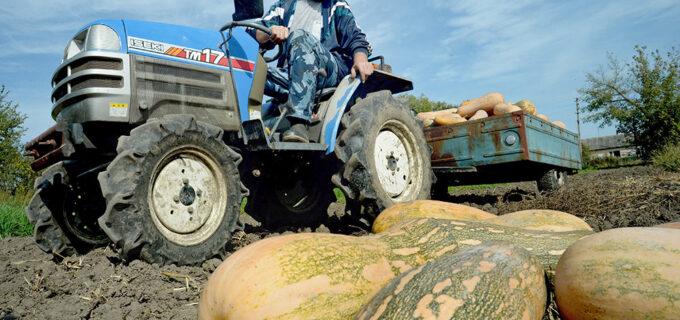 Абрамченко: Аграриям разрешат год не платить по льготным кредитам