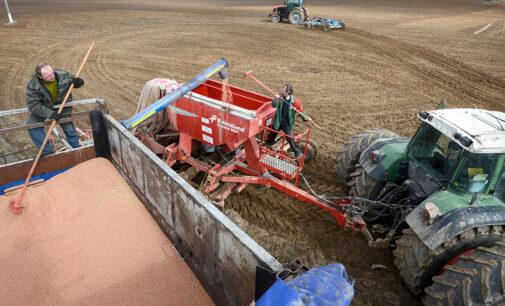 Аграрии увеличили объем внесения удобрений на 20 процентов