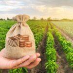 Астраханские фермеры получат из бюджета 1 млрд руб.