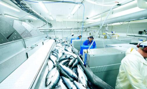 Нижегородская область экспортировала на 16 млрд руб.