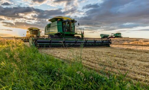 Кузбасс раньше сроков собрал миллион тонн зерна