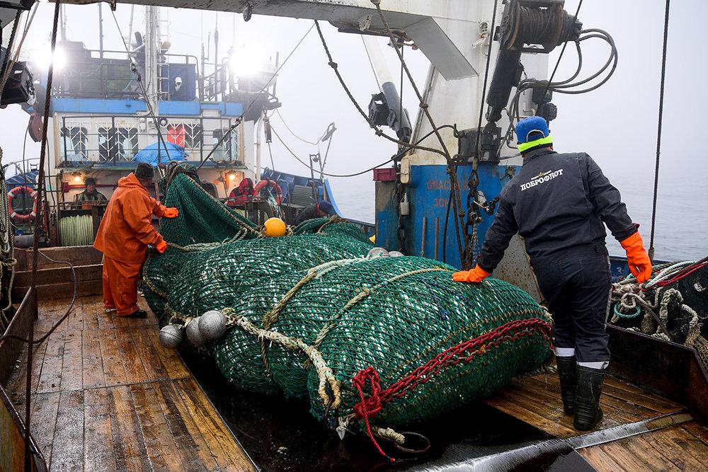 Абрамченко урегулирует вопрос открытия китайских портов для рыбы из РФ