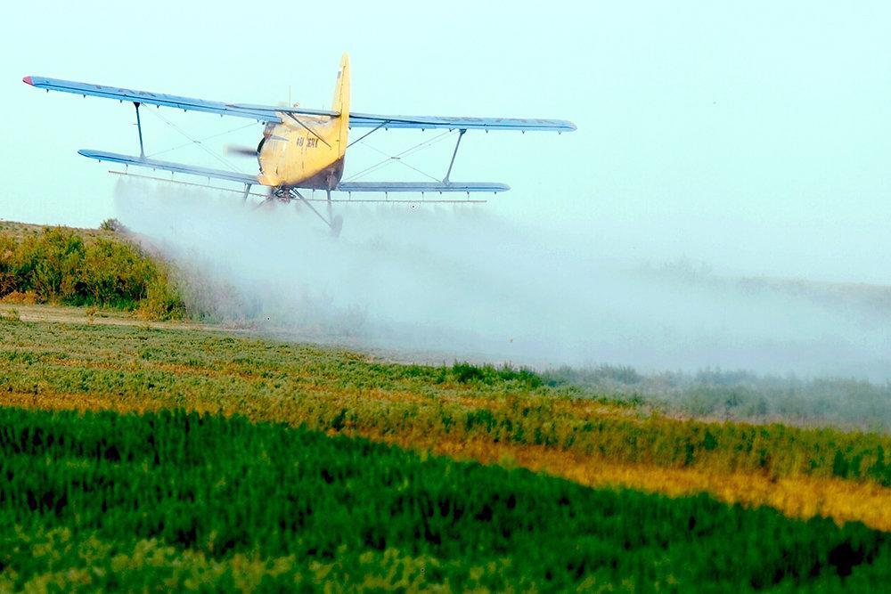 За пестицидами проследит Россельхознадзор