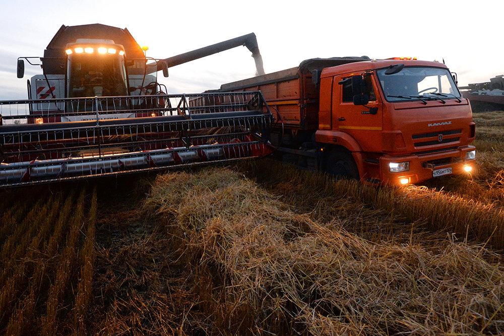 Минсельхоз может отказаться от экспортных пошлин на зерно