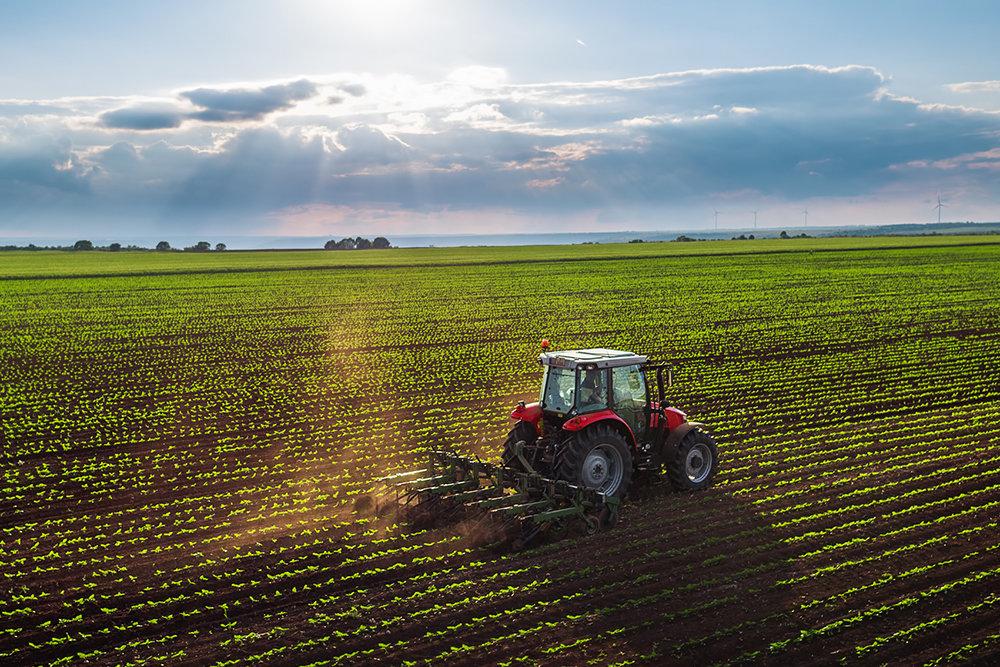 В аграрных компаниях появились вакансии с зарплатой 250 тысяч рублей
