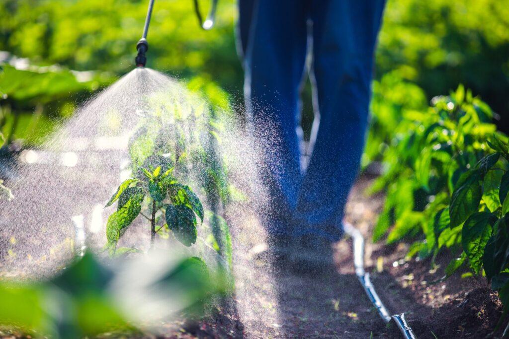 Россия ужесточила контроль за ввозом пестицидов и агрохимикатов