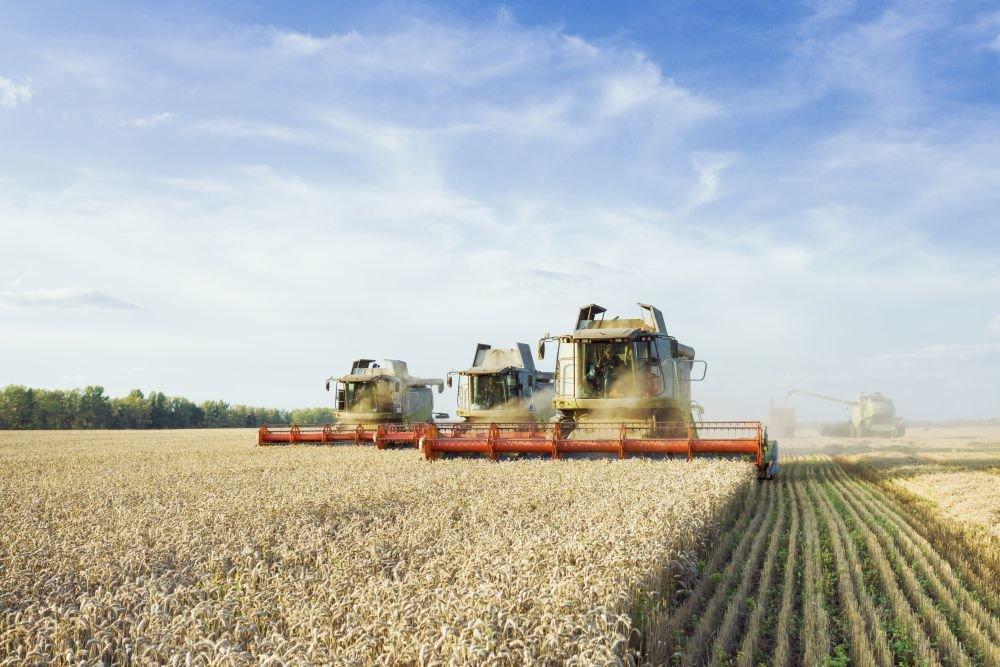 В России начал меняться климат, который влияет на урожай зерновых