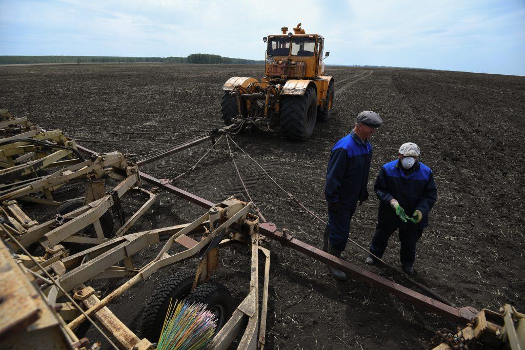 Эксперты предложили упростить получение льготных кредитов для фермеров