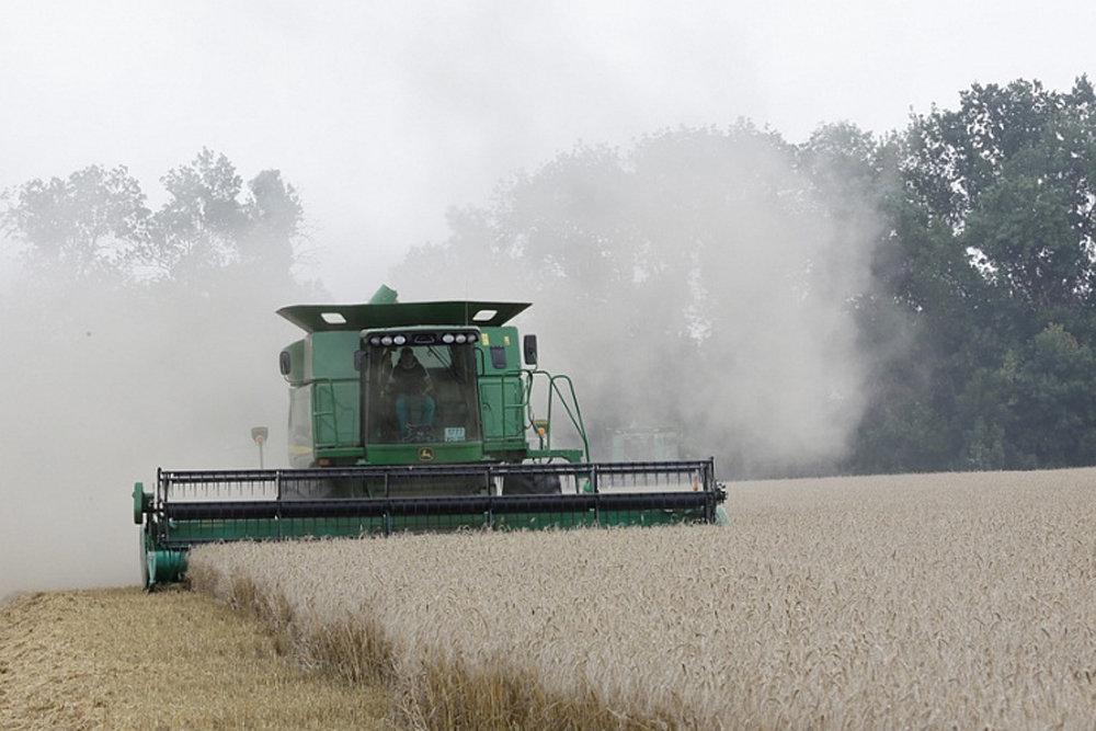 На Кубани собраны рекордные 12,4 миллиона тонн зерна