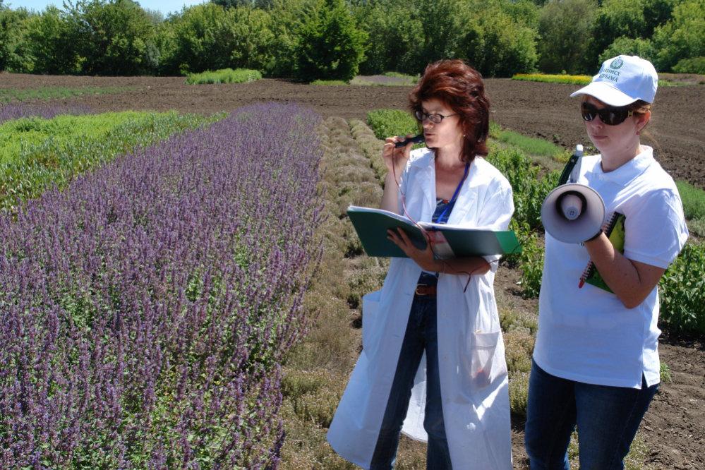 Ученые решили проблему продовольственной безопасности Крыма
