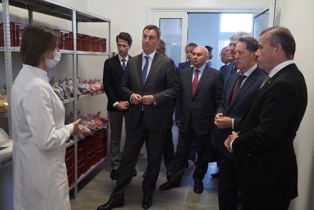В России запустили первую производственную линию одного из крупнейших заводов по производству семян подсолнечника и кукурузы